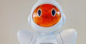 Birò-robot (1)