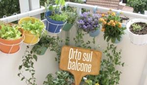 orto-sul-balcone